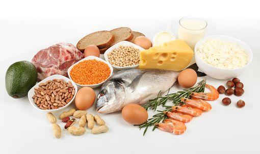 Блюда с большим количеством белка