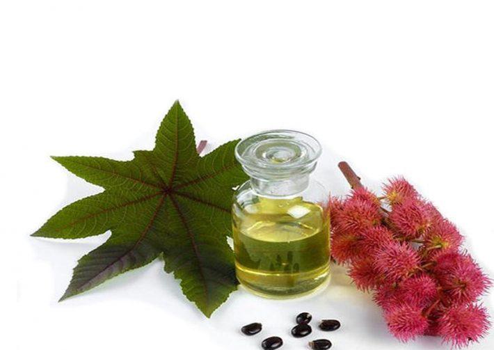 Использовать касторовое масло вместо крема для лица