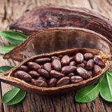 какао масло для тела
