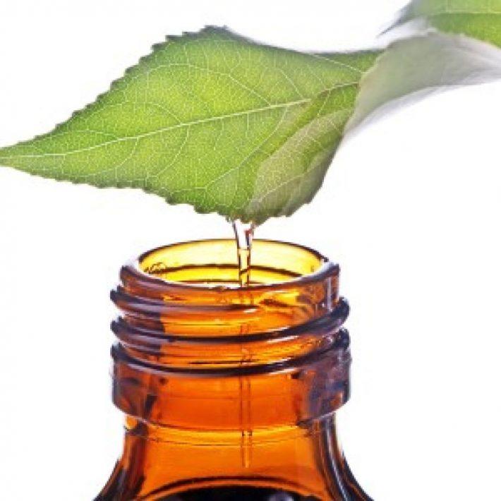 Эфирное масло пачули полезные свойства и применение
