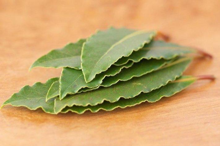 сухие листья лаврового листа