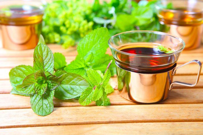 мелисса лимонная лечебные свойства и противопоказания