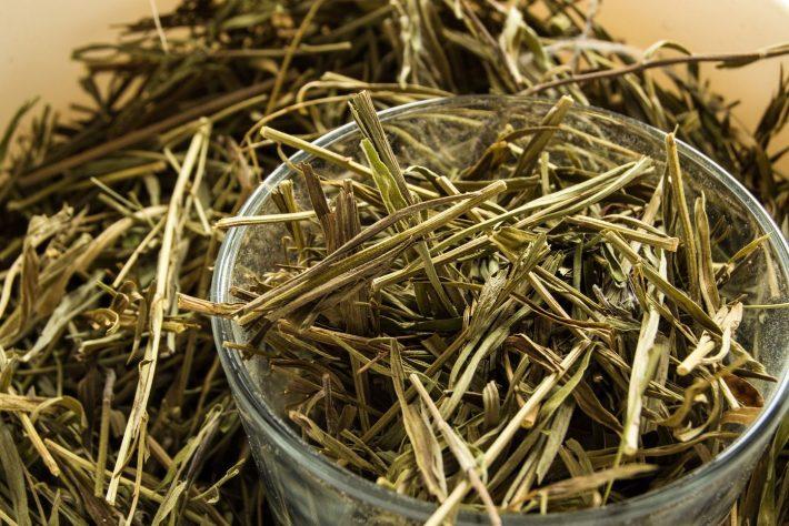 Тархун: полезные свойства и противопоказания растения, как называется по другому