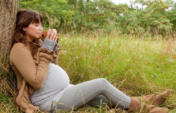 душица для беременных