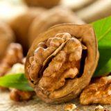 грецкий орех для волос